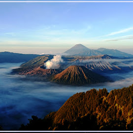bromo mountain by JOe Arian - Instagram & Mobile Android