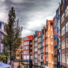 Colourful Canal by Adam Lang - City,  Street & Park  Neighborhoods ( water, tree, street, reflections, amsterdam, canal )