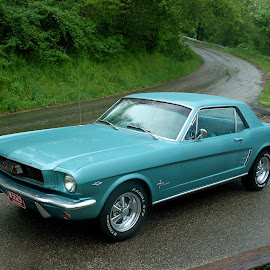 1966 Mustang by Philip Molyneux - Transportation Automobiles (  )