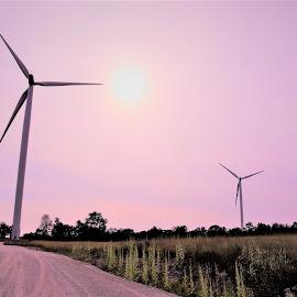 Wind Turbines by Linda    L Tatler - Landscapes Prairies, Meadows & Fields