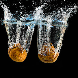 Walnuts splash! by Fabrizio Contadini - Food & Drink Ingredients ( lights, water, flash, fruit, splash, still life, study, splash water photography, walnuts, black )