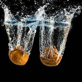Walnuts splash! by Fabrizio Contadini - Food & Drink Ingredients ( lights, water, flash, fruit, splash, still life, study, splash water photography, walnuts, black )