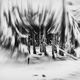 by Marchevca Bogdan - Digital Art Places