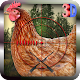 3D Sniper Chicken Shooter