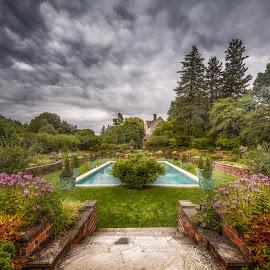 Summer Beauty by Linda Karlin - City,  Street & Park  Vistas ( flowers, landscape, garden )
