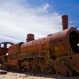 Abandoned Train by Dominic Roy - Transportation Trains