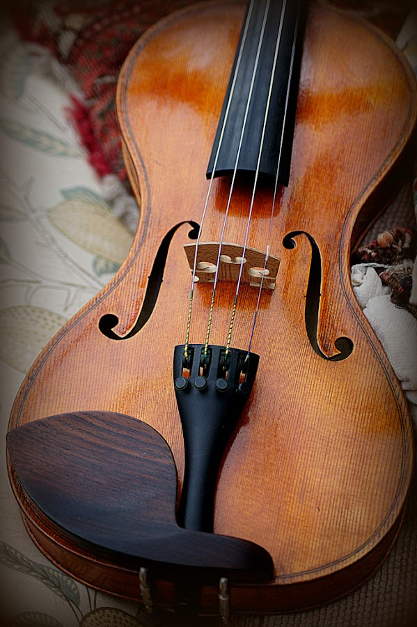 violin by Caroline Beaumont - Artistic Objects Musical Instruments ( violin )