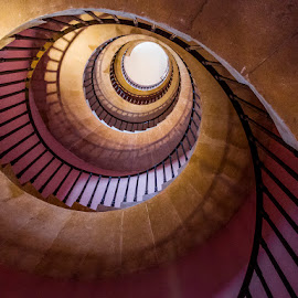 Beckford's Tower Staircase by Simon Harding - Buildings & Architecture Architectural Detail ( abstract, climb, detail, beckford, stairwell, simon harding, architecture, spiral, steps, p7800, up, climbing, stairs, height, landsdown, staircase, bath, architectural, high, nikon,  )