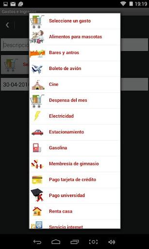 Control Gastos e Ingresos PRO - screenshot