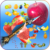 Download Full Real Archery Fruit shooter Simulator 1.0 APK