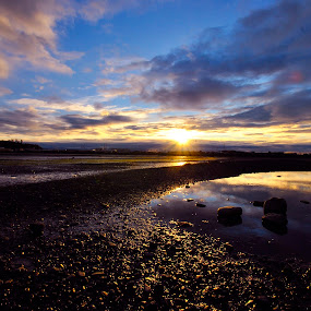 Nelson Sunset by Alexsandra Wiciel - Landscapes Waterscapes ( clouds, sky, nature, pwcpath, sunset, ocean, landscape, rocks, new zealand )