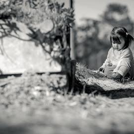 Cute by Bruno Martins - Babies & Children Child Portraits ( cute baby, portrait )