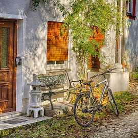 home by Yuriy Podoba - City,  Street & Park  Street Scenes ( hdr, autumn, door, scenery, bicycle )