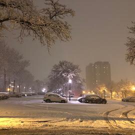 Snow and Night by Bashir Sadat - City,  Street & Park  Night ( winter, whiteland, snow, night )