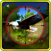 Game Jungle Birds Sniper Hunt apk for kindle fire