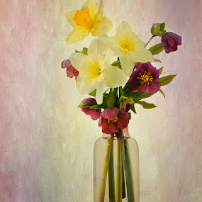 In The Pink by Jon Kinney - Flowers Flower Arangements ( red and yellow, flower arrangement )