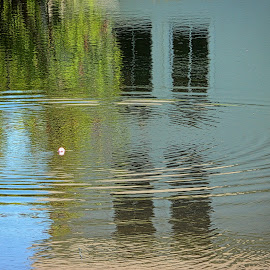 Gone Fishing by Judy Laliberte - Novices Only Landscapes ( water, nature, ripples, bobbin, reflections )