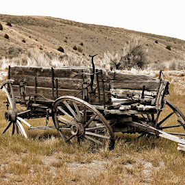 Archaic Mode of Travel by Twin Wranglers Baker - Artistic Objects Antiques ( bannack, ghost town, wagon, old wagon, antique )