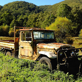 abandoned truck by Donna Racheal - Transportation Other ( abandoned truck, old, vehicle, old truck, decaying,  )