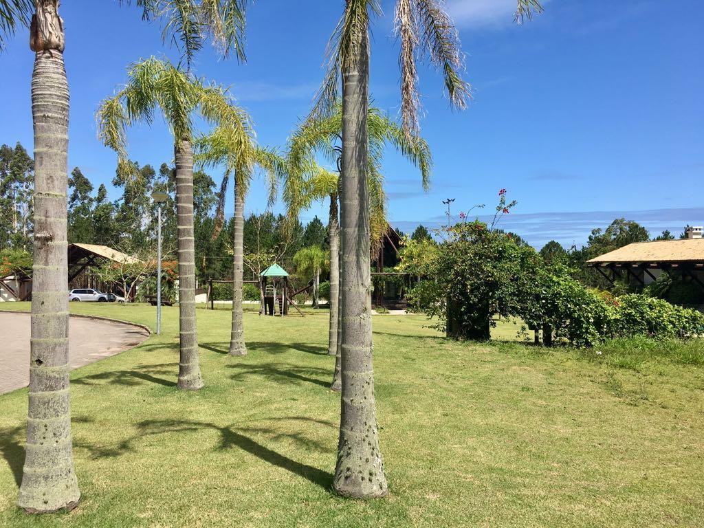 Terreno, Campeche, Florianópolis (TE0042) - Foto 13