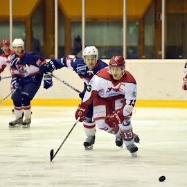 by Marco Bertamé - Sports & Fitness Ice hockey