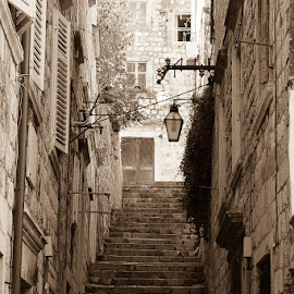 Keep Climbing by Rose Lindquist - City,  Street & Park  Street Scenes ( adriatic, stairs, village, old town, quiet, rocks, coastal, historic )