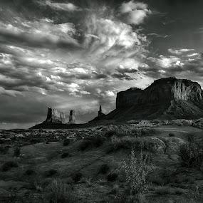Before storm by Gosha L - Black & White Landscapes ( nature, landscapes,  )