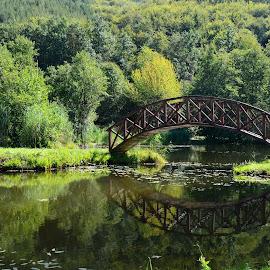 by OL JA - Buildings & Architecture Bridges & Suspended Structures