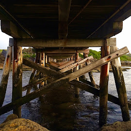 Water Under the Bridge by Angela Taya - Novices Only Objects & Still Life