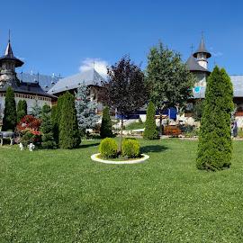 by Agatanghel Alexoaei - City,  Street & Park  City Parks