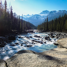 The River  by Brad Imig - Landscapes Forests