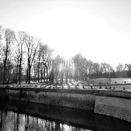 paysage d'hiver by Nathalie Coget - Black & White Landscapes