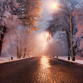Road to Kalenberg by Zoran Osijek - City,  Street & Park  City Parks ( wien, kalenberg )