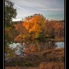 Fall finally on track by Deborah Felmey - City,  Street & Park  City Parks ( railroad tracks, waterscape, colors, fall, reflections, landscape, pond,  )