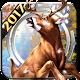 Wild Deer Hunting 2017