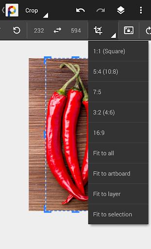 MobiSystems PhotoSuite 4 Free screenshot 8