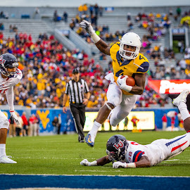WVU - Smallwood by Craig Gunter - Sports & Fitness American and Canadian football