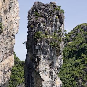 by Matt Lampey - Nature Up Close Rock & Stone