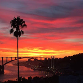 Oporto sunset by Janete Ribeiro - Instagram & Mobile iPhone