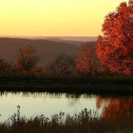 Fall Reflections by Karen Carter - Landscapes Waterscapes ( water, reflection, sky, fall, trees )