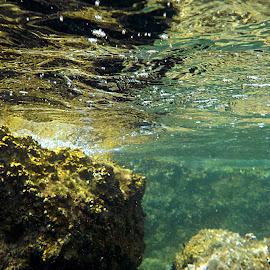 Depths of the sea of Porec by Patrizia Emiliani - Landscapes Underwater ( depths, croatia, sea, porec )