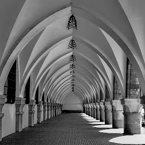 by Гојко Галић - Buildings & Architecture Architectural Detail ( detail, black and white, arches, architecture, tunel )