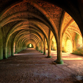 Underneath the Arches by Phil Robson - Buildings & Architecture Public & Historical ( yorkshire, perpective, arches, architecture, fountains abbey,  )