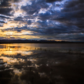 Whitewater Draw by Gannon McGhee - Landscapes Sunsets & Sunrises ( clouds, draw, reflection, area, sunset, wildlife, whitewater )