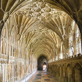 Gloucester Cathedral Cloister by Timothy Carney - Buildings & Architecture Places of Worship ( gothic, gloucester, cloister, fan vaulting, cathedral )