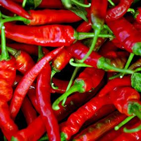 chillies by Mohamad Sa'at Haji Mokim - Food & Drink Fruits & Vegetables