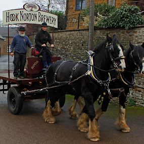 Going for a pint by Wilson Beckett - Transportation Other (  )