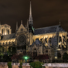 Notre Dame After Dark  by Tom Baker - Buildings & Architecture Places of Worship ( paris, paris at night, notre dame, cathedral, worship )