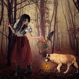 Red riding hood by Sergiu Pescarus - Digital Art People ( forest fog, bird, lantern, red riding hood, red, fog, wolf, basket, white wolf, forest, evening )