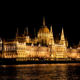 Hungarian Parliament by Ricardo Fong - Buildings & Architecture Public & Historical ( pest, reflection, castle, parlliament, night, church, danube, budapest, river, building, hungary )